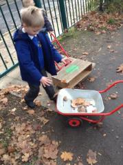 Collecting leaves for our hedgehog house