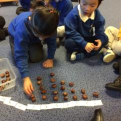 More counting with conkers