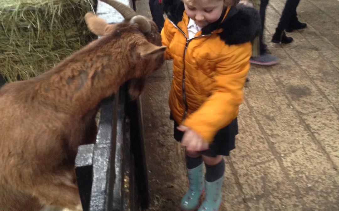 Reception visit Tweddle Farm